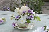 Kleines Windlicht 'Tasse in Tasse' : Blüten von Malva sylvestris