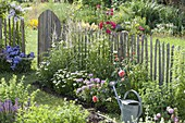 Summer bed with perennials and roses at the fence