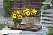 Calendula (marigold) and Tagetes tenuifolia bouquet