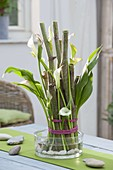 Modern bouquet with stems of Riesenknöterich as a stool