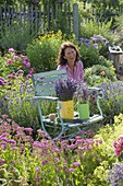 Chair with freshly cut lavender (Lavandula)