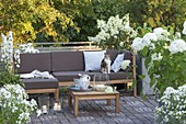 Terrace with white plants, lounge corner and table, Hydrangea 'Annabelle'