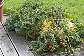 Tomato 'Tumbler' planted directly in sack with potting soil