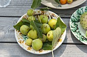 Freshly picked figs (Ficus carica) on ceramics