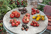Tomato tray on round patio table
