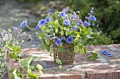 Small bouquet in wicker vase on garden wall, Centaurea cyanus