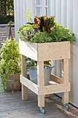 Build rollable raised bed on balcony yourself and plant with vegetables