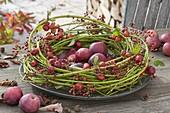 Wreath of cornus twigs filled with apples, ornamental apples