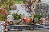 Forest table decoration with bark, leaves and beechnut cups