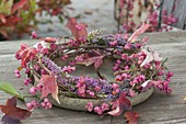 Wreath of Euonymus (spindle tree) branches, Erica gracilis