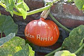 Hokkaido pumpkin with 'Bon appetit' message