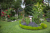 Round bed with bird bath in well-tended garden