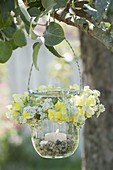 Preserving jar as a lantern with flowers from Antirrhinum