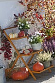 Orange flower staircase with pumpkins and heather