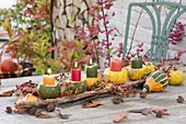 Pumpkin table decoration with decorative pumpkins and bark