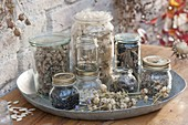 Jars with collected perennials, summer flowers and vegetables seeds
