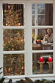 View from outside into the Christmas room with Christmas tree