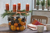 Wire basket with oranges, mandarins and pinus, cones