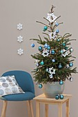 Living Picea abies (red spruce) decorated with blue tree balls