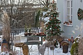 Snowy Christmas Terrace with Abies koreana (Korean fir)