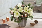 Christmas bouquet with white Hippeastrum, Pinus branches