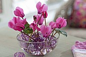Violet balls of wire in glass bowl as plug-in aid for flowers and leaves