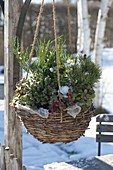 Hanging flower basket with hardy plants