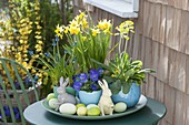 Easter Bowl with Narcissus 'Tete a Tete', Primula veris
