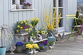 Easterly decorated spring garden colorfully planted