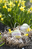 Easter nest made of twisted grasses, easter egg with message 'Frohe Ostern'