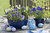Blue, enameled Guglhupfform, baking dish and milk pot planted with Narcissus