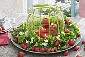 Wild strawberries (Fragaria) leaves and flowers wreath