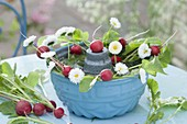 Edible Decoration, Radishes (Raphanus) and Bellis (Daisies)