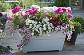White-pink planted wooden box