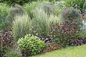 The different colors and structures of perennials, grasses