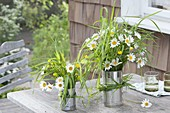 Meadow bouquets of grasses, leucanthemum and ranunculus