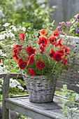 Rural bouquet with Papaver rhoeas (poppies) and grasses