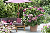 Shaded terrace with lounge area and parasol