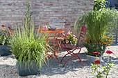 Easy-care Kiesterrasse, Eragrostis curvula