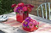 Zinnia in red, square ceramic vases