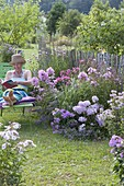 Green lounger on flowerbed with Phlox paniculata, P. amplifolia