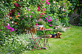 les JARDINS De Roquelin, Loire Valley, FRANCE: LAWN AND 15TH CENTURY French FARMHOUSE with Antique FURNITURE AND FAMILY Dog 'Garance'