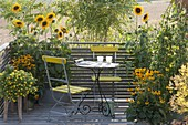 Yellow late summer balcony with Helianthus annuus (sunflower)