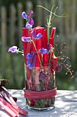 Unusual arrangement of red Swiss chard stalks