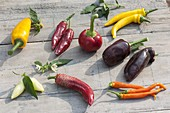 Tableau with peppers and peppers