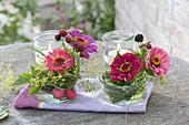 Small deco made of zinnia (zinnia), blackberries (Rubus), fennel