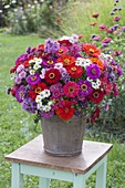 Rustic bouquet made of zinnia, aster (white wood aster)