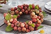 Wreath from Malus 'Van Eseltine' (ornamental apple)