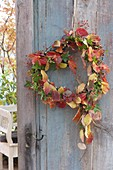 Heart with autumn leaves as a door wreath