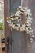 Lunaria (silver taler) heart with fairy lights as door wreath